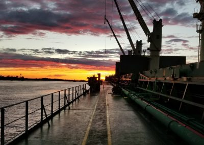 Tricoastaltrading-LogisticsPage-gallery-4c